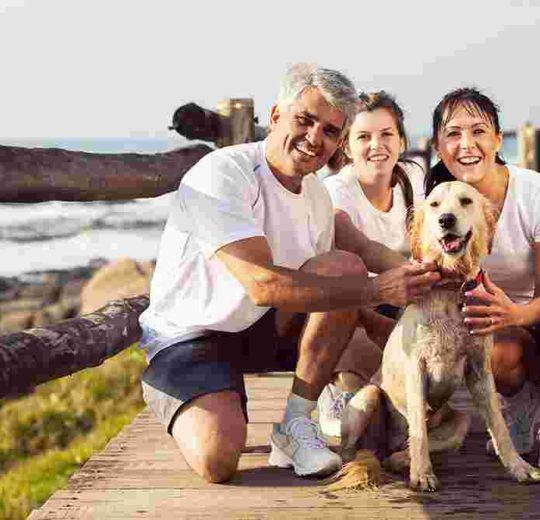 Find a Pet-Friendly Town