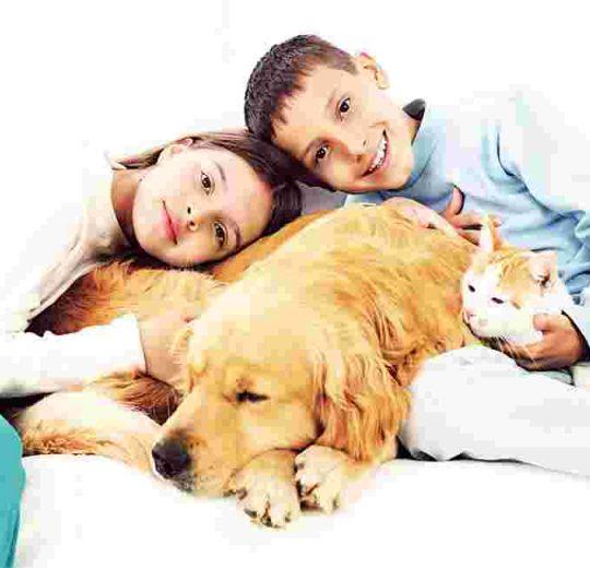 Can a Pet Get You Sick?