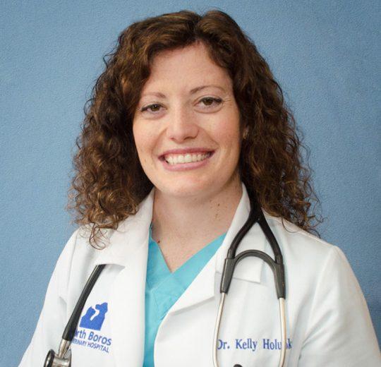 Kelly H. Holupka, DVM